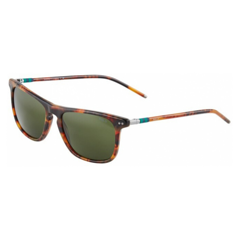 POLO RALPH LAUREN Slnečné okuliare '0PH4168'  hnedá / béžová / zelená