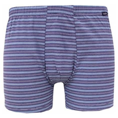 Men's boxers Andrie blue-gray (PS 5376 B)