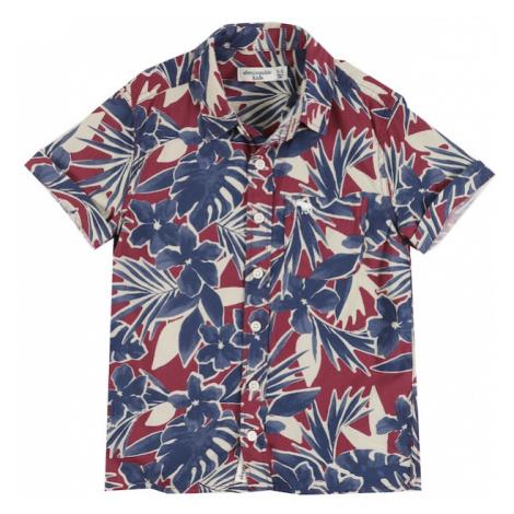Abercrombie & Fitch Košeľa  zmiešané farby