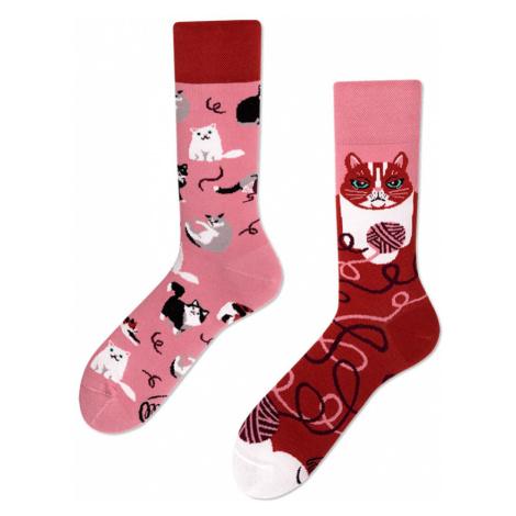 Červeno-ružové ponožky Playful Cat Many Mornings
