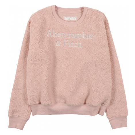 Abercrombie & Fitch Sveter  tmavoružová / striebornosivá