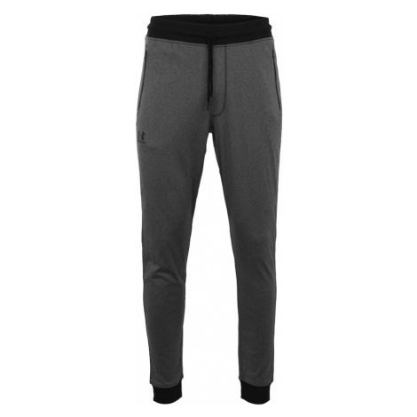UNDER ARMOUR Športové nohavice  čierna / tmavosivá