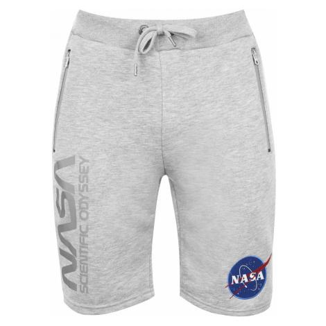 Alpha Industries NASA Shorts