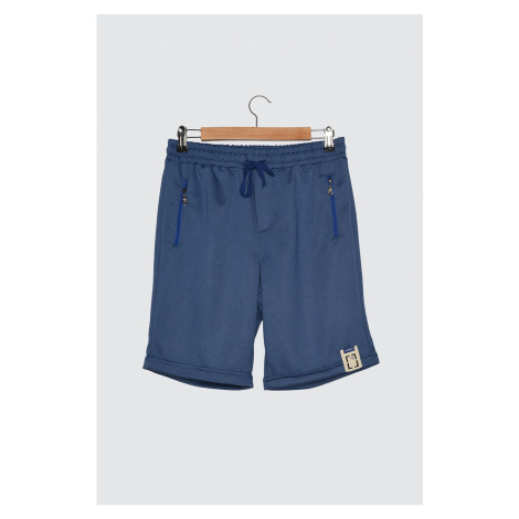 Trendyol Indigo Men's Regular Fit Shorts & Bermuda