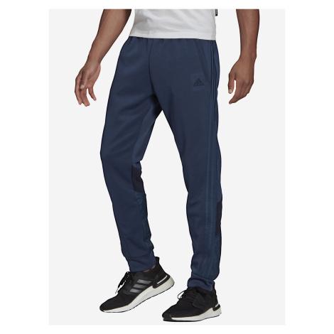 Sportswear Tepláky adidas Performance Modrá