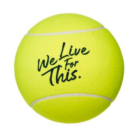 Babolat Midsize Ball French Open