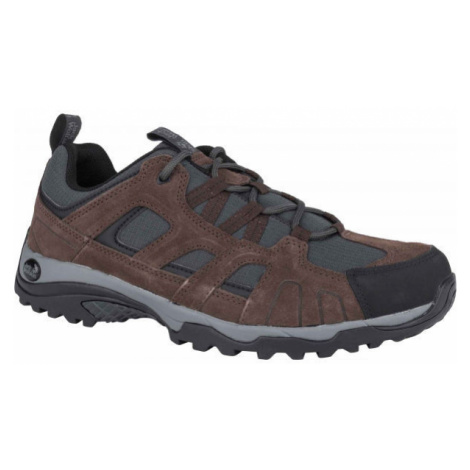 Jack Wolfskin MONTANA HIKE LOW - Pánska outdoorová obuv