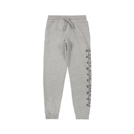 Napapijri Teplákové nohavice K Moli 1 NP0A4E9R1601 S Sivá Regular Fit
