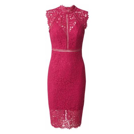 Bardot Kokteilové šaty  purpurová