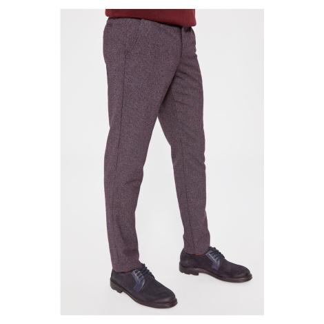 Trendyol Burgundy Men's Slim Fit Chino Pants