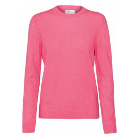 Colorful Standard Women Light Merino Wool Crew-L ružové CS5084-BG-L